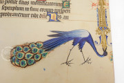 Breslau Psalter, Cambridge, Fitzwilliam Museum, MS 36-1950 − Photo 28