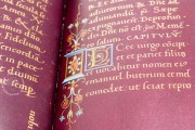 Durazzo Book of Hours, m.r. C.f. Arm. I - Biblioteca Civica Berio (Genoa, Italy) − photo 8