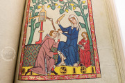 Codex Manesse, Heidelberg, Universitätsbibliothek Heidelberg, Cod. Pal. germ. 848 − Photo 20