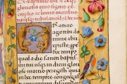 Hours of Joanna I of Castile and Philip the Fair, London, British Library, Add MS 18852 − Photo 7