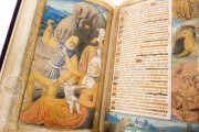 Book of Hours of the Dauphin of France, Grenoble, Bibliotheque municipale de Grenoble, Ms. 1011 − Photo 13