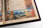 Book of Hours of the Dauphin of France, Grenoble, Bibliotheque municipale de Grenoble, Ms. 1011 − Photo 16