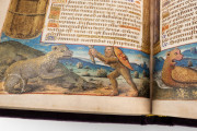 Book of Hours of the Dauphin of France, Grenoble, Bibliotheque municipale de Grenoble, Ms. 1011 − Photo 20