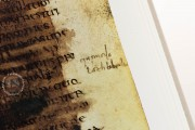 Manoscritto Veronese delle Institutiones di Gaio, Verona, Biblioteca Capitolare di Verona − Photo 10