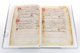 Codex Turin J.II.9 Facsimile Edition