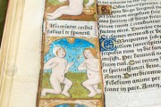 Great Hours of Rouen, Rouen, Bibliothèque Jacques Villon, Ms. Leber 155 − Photo 18