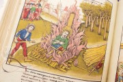 Diebold Schilling's Spiez Illuminated Chronicle, Bern, Burgerbibliothek, Mss.h.h.I.16 − Photo 6