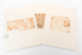Drawings of Leonardo da Vinci and his circle - Biblioteca Ambrosiana in Milan (Collection) Facsimile Edition