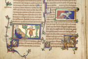 Peterborough Bestiary, Cambridge, Parker Library in the Corpus Christi College, MS 53 − Photo 11