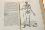Andreas Vesalius: De Humani Corporis Fabrica and Epitome, Kyoto, International Research Center for Japanese Studies Library, I/115 − Photo 13