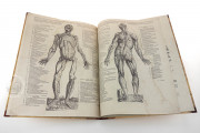 Andreas Vesalius: De Humani Corporis Fabrica and Epitome, Kyoto, International Research Center for Japanese Studies Library, I/115 − Photo 15