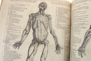 Andreas Vesalius: De Humani Corporis Fabrica and Epitome, Kyoto, International Research Center for Japanese Studies Library, I/115 − Photo 16