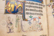 The Queen Mary Psalter, London, British Library, Royal MS 2 B VII − Photo 13