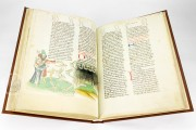 Vorau Picture Bible, Vorau, Stift Vorau, Codex 273 − Photo 15