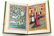Book of Lovers, Ms. 388 - Musée Conde (Chantilly, France) − Photo 7