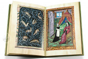 Book of Lovers, Ms. 388 - Musée Conde (Chantilly, France) − photo 10