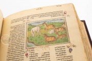 Rothschild Miscellany, Jerusalem, Israel Museum, Ms. 180/51 − Photo 14