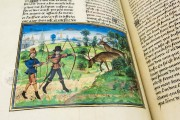 Book of the Hunt, Bruxelles, Bibliothèque Royale de Belgique, Ms. 10218 − Photo 13