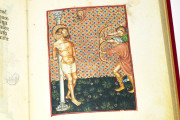 Master of Modena Hours, Modena, Biblioteca Estense Universitaria, Ms. Lat. 842 = alfa.R.7.3 − Photo 3