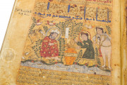Kitab al-Diryaq, Paris, Bibliothèque Nationale de France, Ms. Arabe 2964 − Photo 5