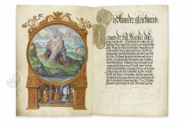 Splendor Solis Facsimile Edition