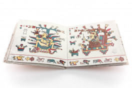 Codex Laud Facsimile Edition