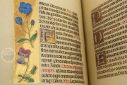 La Flora - Book of Hours, Naples, Biblioteca Nazionale Vittorio Emanuele III, Ms. I.B.51 − Photo 7