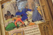 La Flora - Book of Hours, Naples, Biblioteca Nazionale Vittorio Emanuele III, Ms. I.B.51 − Photo 21