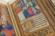 La Flora - Book of Hours, Naples, Biblioteca Nazionale Vittorio Emanuele III, Ms. I.B.51 − Photo 26