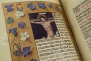 La Flora - Book of Hours, Naples, Biblioteca Nazionale Vittorio Emanuele III, Ms. I.B.51 − Photo 37