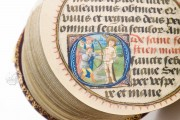 Codex Rotundus, Hs 728 - Dombibliothek (Hildesheim, Germany) − photo 12