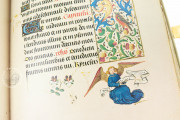 Hours of Mary of Burgundy, Vienna, Österreichische Nationalbibliothek, Codex Vindobonensis 1857 − Photo 5