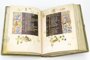Hours of Mary of Burgundy, Vienna, Österreichische Nationalbibliothek, Codex Vindobonensis 1857 − Photo 8