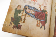 Medicina Antiqua, Codex Vindobonensis 93 - Österreichische Nationalbibliothek (Vienna, Austria) − Photo 11