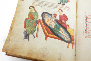 Medicina Antiqua, Codex Vindobonensis 93 - Österreichische Nationalbibliothek (Vienna, Austria) − Photo 18