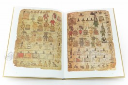 Matrícula de Tributos - Moctezuma Codex Facsimile Edition