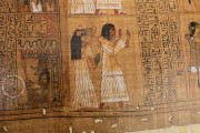 Papyrus Ani, London, British Museum, Nr. 10.470 − Photo 17