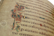 Book of Kells, Ms. 58 (A.I.6) - Library of the Trinity College (Dublin, Ireland) − Photo 16