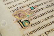 Book of Kells, Ms. 58 (A.I.6) - Library of the Trinity College (Dublin, Ireland) − Photo 18