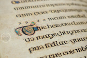 Book of Kells, Ms. 58 (A.I.6) - Library of the Trinity College (Dublin, Ireland) − photo 25