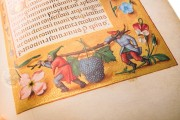 Rothschild Hours , Private Collection, Codex Vindobonensis S. n. 2844 − Photo 14