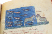 Treatise on Hunting and Fishing, Venice, Biblioteca Nazionale Marciana, Cod. Gr.Z.479 (=881) − Photo 5