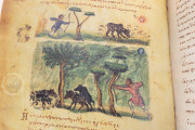 Treatise on Hunting and Fishing, Venice, Biblioteca Nazionale Marciana, Cod. Gr.Z.479 (=881) − Photo 6
