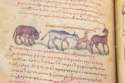Treatise on Hunting and Fishing, Venice, Biblioteca Nazionale Marciana, Cod. Gr.Z.479 (=881) − Photo 17