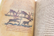 Treatise on Hunting and Fishing, Venice, Biblioteca Nazionale Marciana, Cod. Gr.Z.479 (=881) − Photo 22