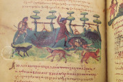 Treatise on Hunting and Fishing, Venice, Biblioteca Nazionale Marciana, Cod. Gr.Z.479 (=881) − Photo 23