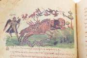 Treatise on Hunting and Fishing, Venice, Biblioteca Nazionale Marciana, Cod. Gr.Z.479 (=881) − Photo 29