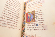 Medici-Rothschild Hours, Aylesbury, Rothschild Collection at Waddesdon Manor, Ms. 16 − Photo 4