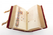 Medici-Rothschild Hours, Aylesbury, Rothschild Collection at Waddesdon Manor, Ms. 16 − Photo 5