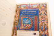 Medici-Rothschild Hours, Aylesbury, Rothschild Collection at Waddesdon Manor, Ms. 16 − Photo 14